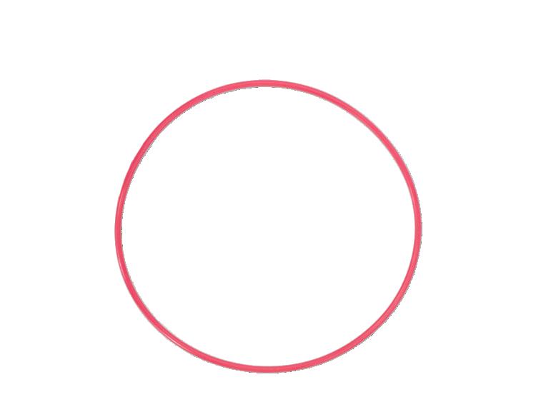 Olympus POL‑EP01 O-Ring