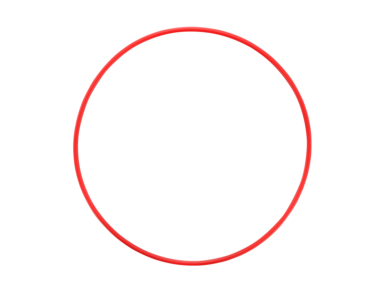 Olympus POL‑EP14 O-Ring