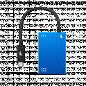 Angelbird SSD2GO PKT MK2 Blu